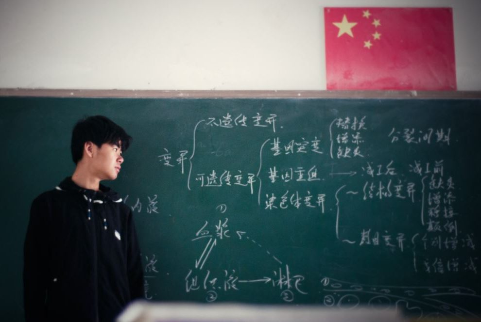 """When the evolution of a language is driven by political dissent: the example of Chinese """"hot"""" words"""