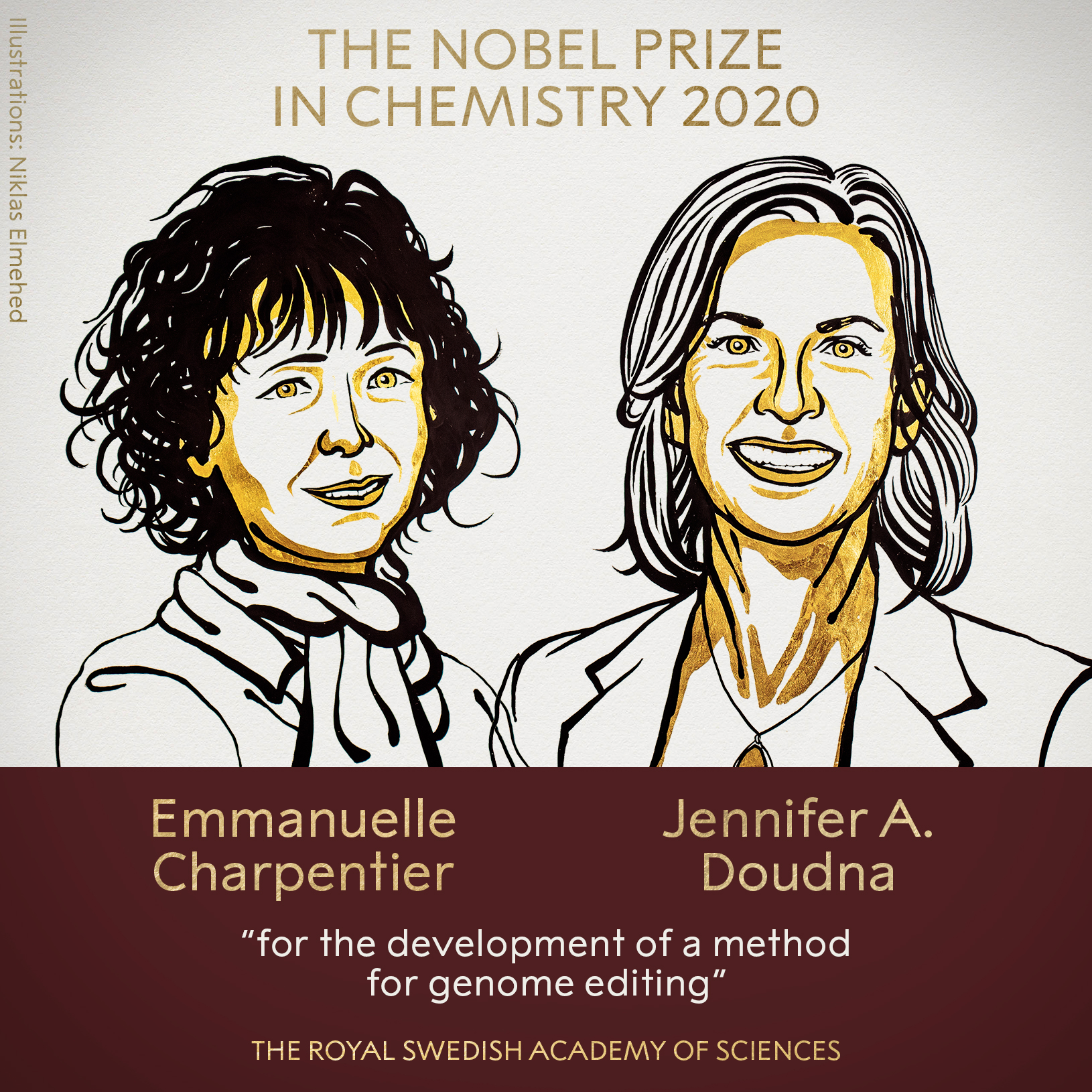 Can Nobel Prizes and other scientific awards further women's progress in STEM fields?
