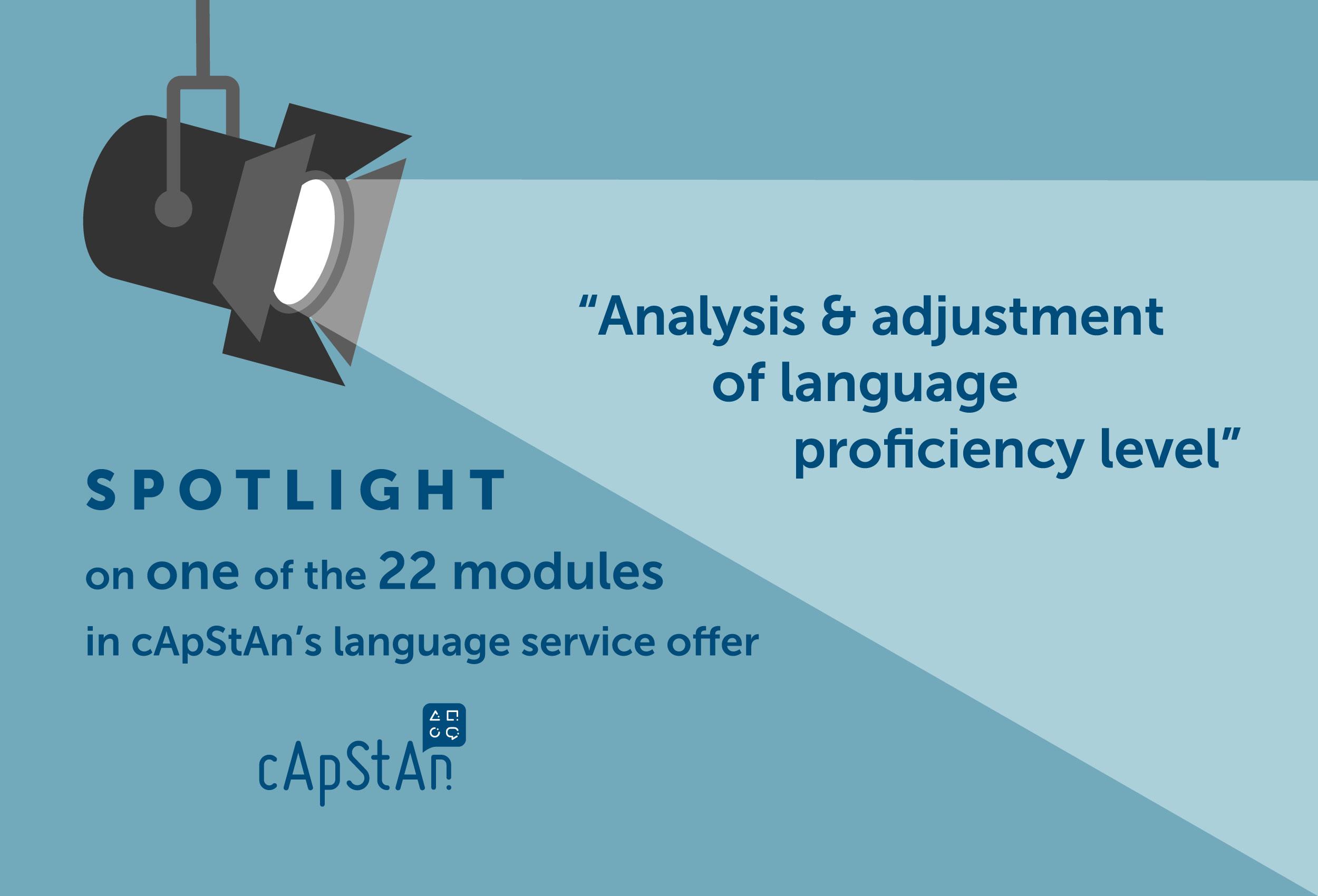 Consultancy Services - Analysis & Adjustment of Language Proficiency Level